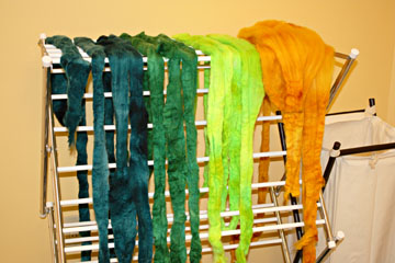 Color as You Spin roving Drying - Web