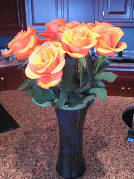 Roses_whole_web