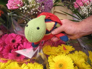 Sheldon_flowers_web